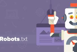 мета-тагове-robots-txt